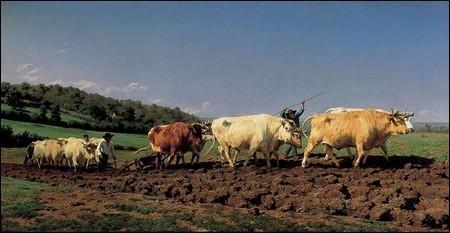 http://hazel.cowblog.fr/images/4labouragenivernais.jpg